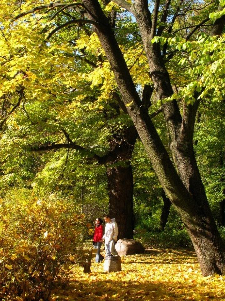 6697-warszawa-w-obiektywie-kolekcja-albumow-zielony-oddech-warszawy-park-praski-5
