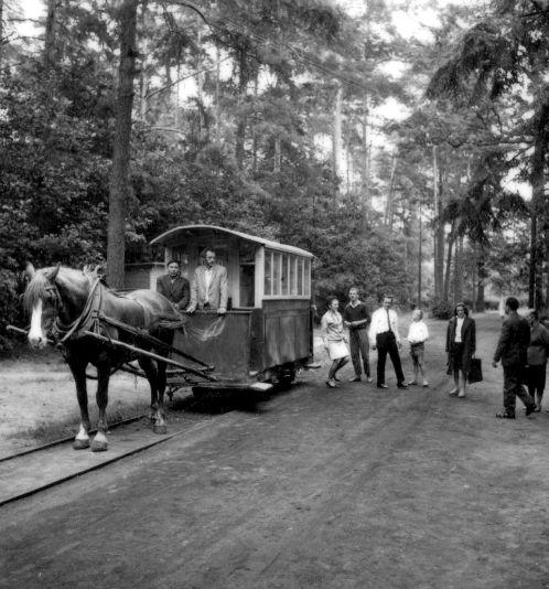 Pociąg konny warszawskiej kolejki dojazdowej na stacji Mrozy
