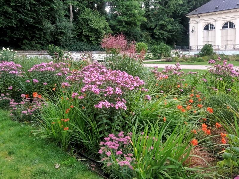 Ogród przed Starą Oranżerią.